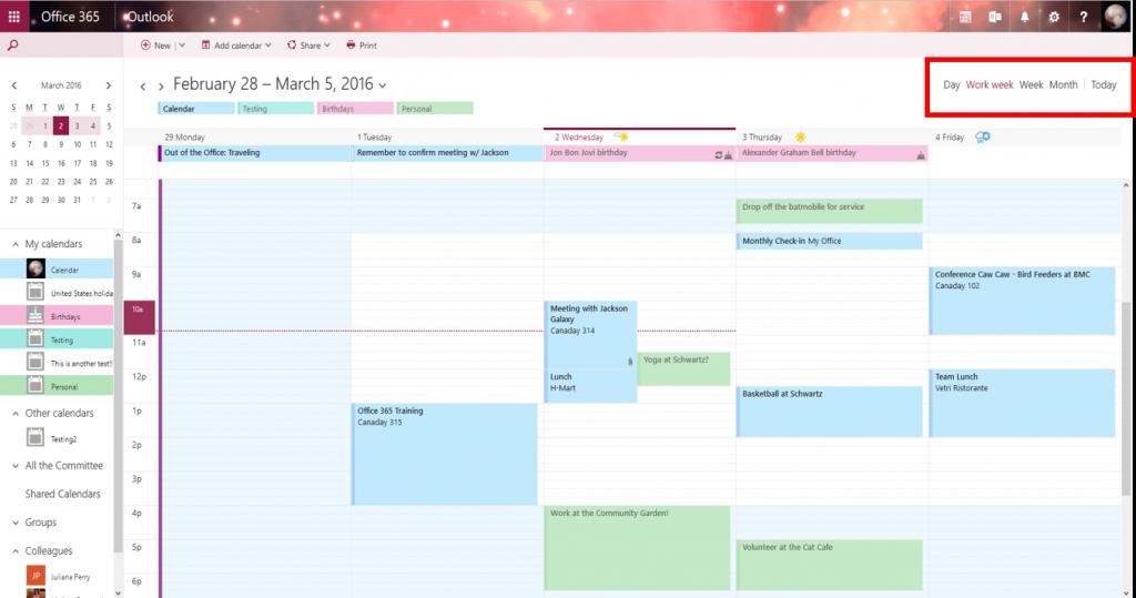Screenshot of OWA Calendar - views
